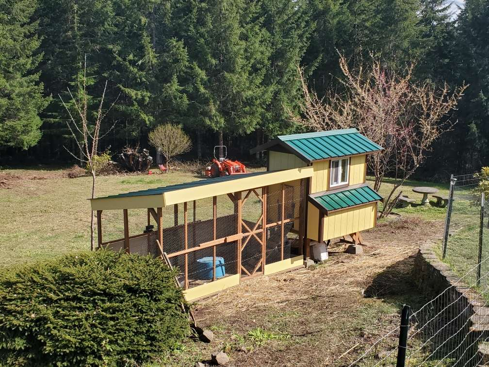 Custom Chicken Coops near me