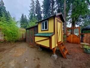 Chicken coops Chehalis Washingon